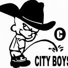 COUNTRY BOY PEE ON CITY BOY RODEO COWBOY REDNECK VINYL DECAL STICKER