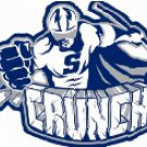 "SYRACUSE CRUNCH AHL HOCKEY LAPTOP PHONE FULL COLOR VINYL STICKER 2.5"" WIDE X 2"" TALL"