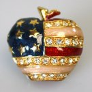 American Flag Apple Brooch
