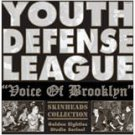 Youth Defense League - Voice of Brookland - LP + Bonus EP