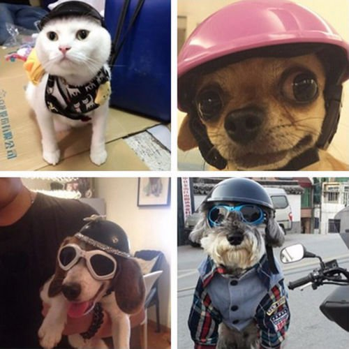 New Pet Dog Cat Clothing Prince Wedding Suit Tuxedo Bow Tie Puppy Clothes Coat