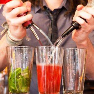 Reusable Liquor Pourer Free Flow Wine Bottle Pour Spout Stopper Stainless Steel