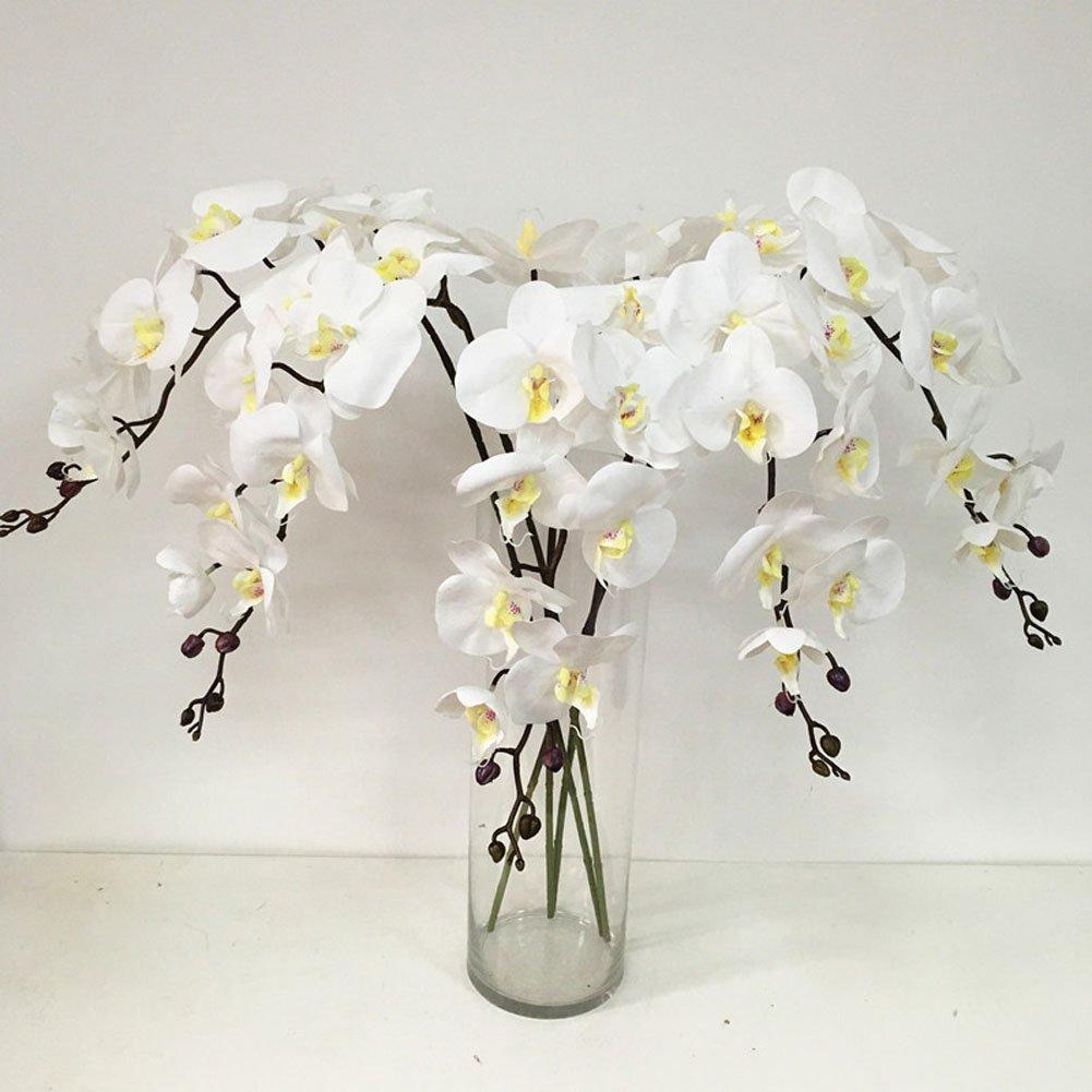 """4 Colors 24k Gold Foil Flower Rose 6"""" Floral Gifts + Pink Forever Love Box SALE"""