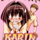 Karin - The Complete Anime Series DVD Set
