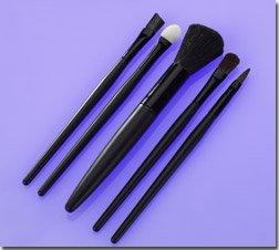 5 PC Brush Set.
