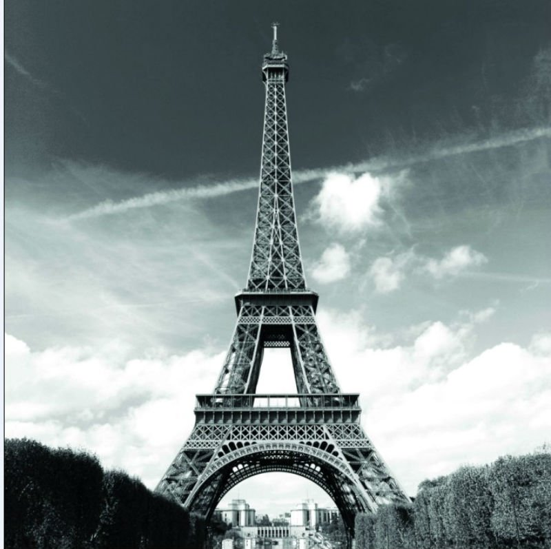 EIFFEL TOWER PARIS Design 180 x 180 cm Bathroom Use Polyester SHOWER CURTAIN SET