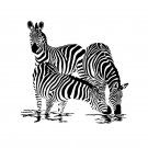 ZEBRA Black & White Design 178 x 178cm Bathroom Use Polyester SHOWER CURTAIN SET