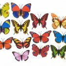 Butterflies Magnets 9cm Wingspan Real Looking Butterfly Many Varieties