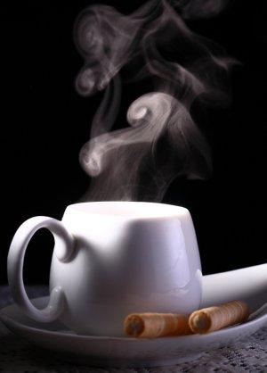 Bai Mu Dan White Tea--1 Ounce