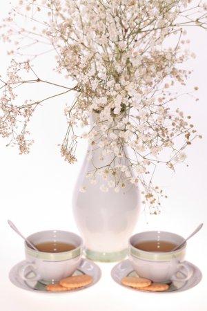 Honeybush Herbal Tea--1 Ounce