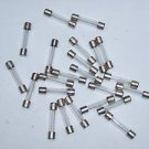 FST  2.0 amp , glass fuses  250 volt 44 pcs. this lot