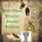 Twin Water Dragons Amulet Talisman Circle Pendant - Magical charm, wicca