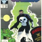 The Punisher #6 Hazardous Waste Mignola Art