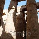 #724 1 Original Digital Photo Beatiful Egypt with Free Shipping