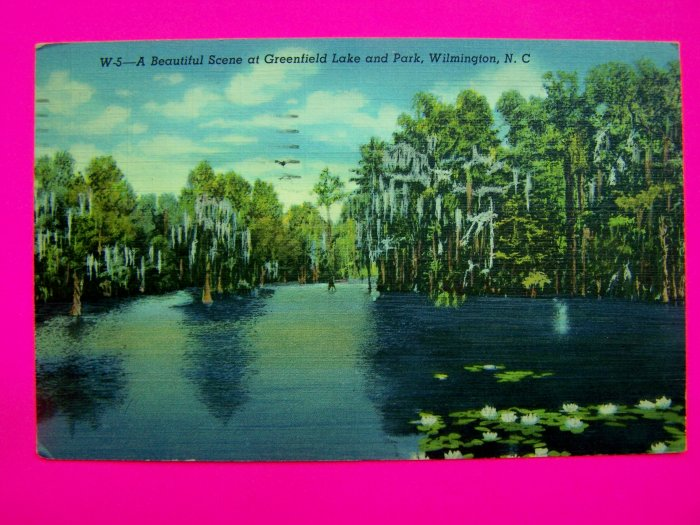 40s Postcard Linen Scene Greenfield Lake Park Wilmington North Carolina USA Old Colortone  Post Card