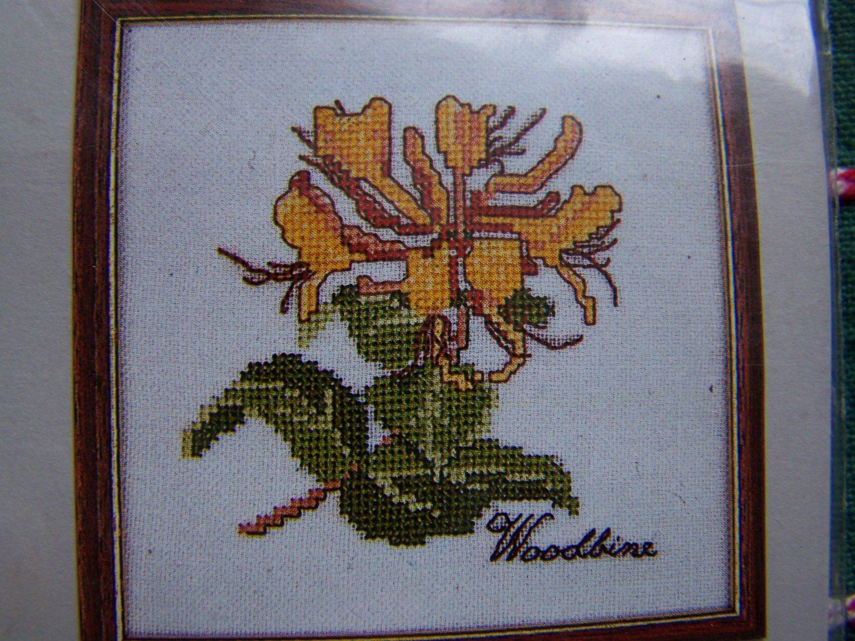 Free USA S&H Elizabeth Stuart Craft Kit Woodbine Floral Cross Stitch Embroidery 207