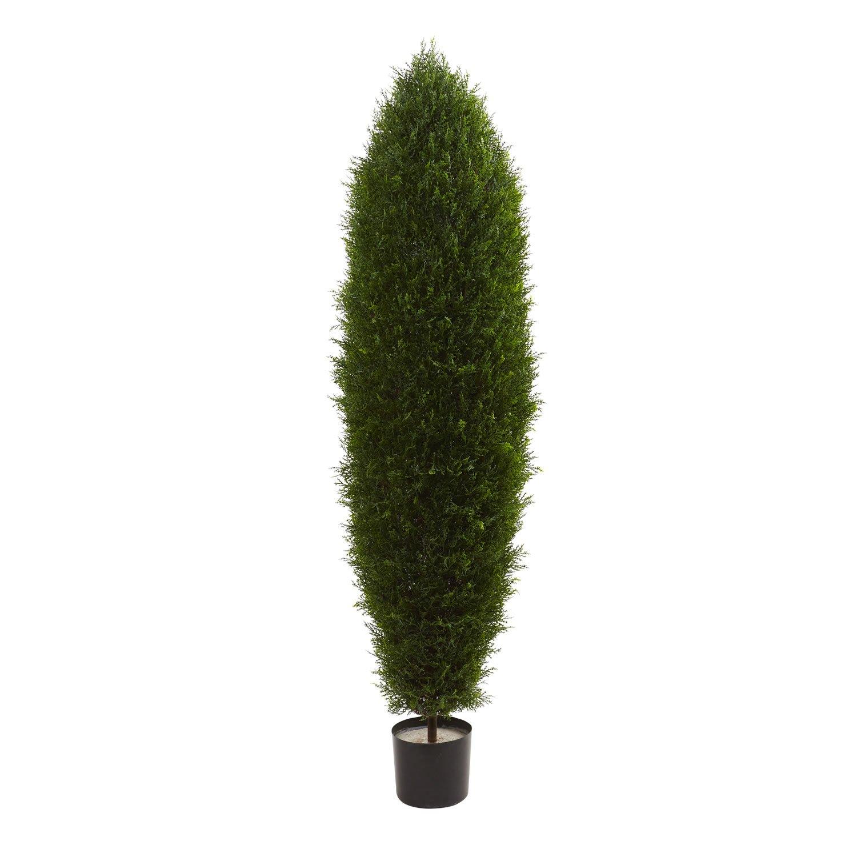 5� Cypress Tree UV Resistant (Indoor/Outdoor) 5455