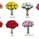 Blooming Carnation Arrangement w/Vase: 1403