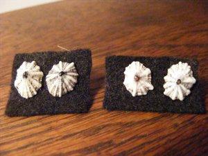Item 018 White Star Stud Earrings