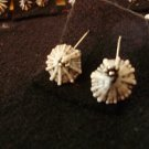 NEW.  Item 031.  White starlike earrings on wires.