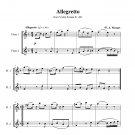 Mozart - Allegretto K. 481
