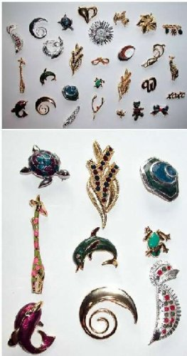 Assorted Quality Jewelry (Fashion Pins)