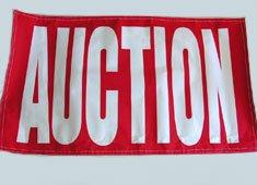 AUCTION 3 X 5 Fluorescent Banner (wholesale price)