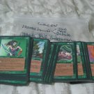 MAGIC THE GATHERING 1995 Homelands Green 57 Common Cards