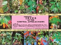 Trees of the Central Appalachians