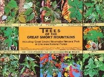Trees of the Great Smoky Mountains