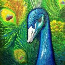 Peacock courting when displaying his colorful plumage Oil painting