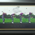 Tiger Woods Signed Art of the Swing Panoramic Display