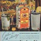 "1938 GORDON'S GIN ""NEVER TASTE THIN"" Advertisement"