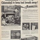 """1952 Ipana Ad """"Ammoniated to reduce decay"""""""