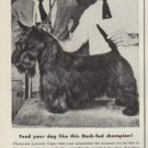 "1952 Dash Dog Food Ad ""Feed your dog"""