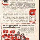 "1953 Black Leaf Ad ""Kill Crabgrass"""