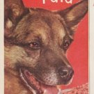 """1961 Pard Dog Food Ad """"treat the family to beef"""""""