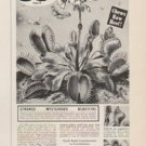 """1961 Thoresen Ad """"Eats Flies & Insects"""""""