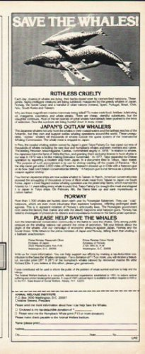 """1980 Animal Cruelty Institute Ad """"Save The Whales"""""""