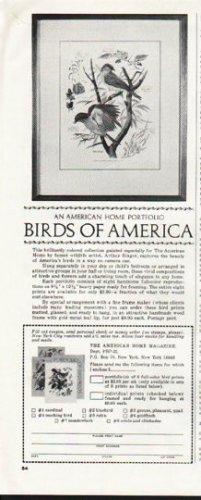 1964 Birds of America Ad ~ An American Home Portfolio