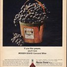 "1965 Mogen David Wines Ad ""If you like grapes"""