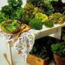 Lettuce (soy wax tarts)
