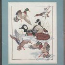 Duck Collage Counted Cross Stitch Kit Large 14 x 18 Lake Cattails Something Special