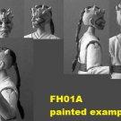 FH01A