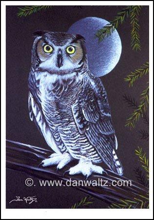 Great Horned Owl Print