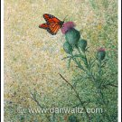 Monarch Butterfly Original