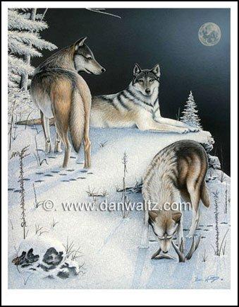 Timber Wolves Original Painting