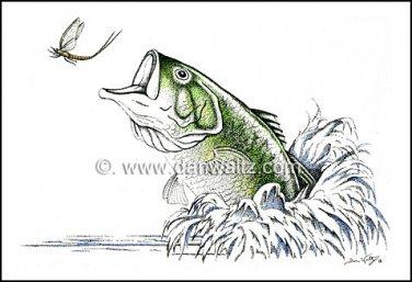 Largemouth Bass Illustration Original