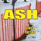 Fits Like a Glove / ASH, Like a Tattoo: ISBN- 9780974177496