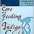 The Care & Feeding of Indigo Children